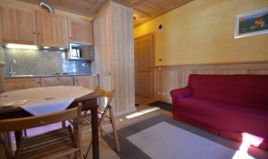 CHARMING TWO-ROOM APARTMENT EASY ACCES TO SKI SLOPES